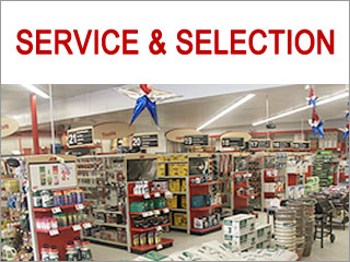 Ace the Helpful Place: Service and Selection